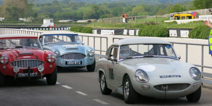 Austin Healey Sprint and Hill Climb Challlenge at Goodwood 2014