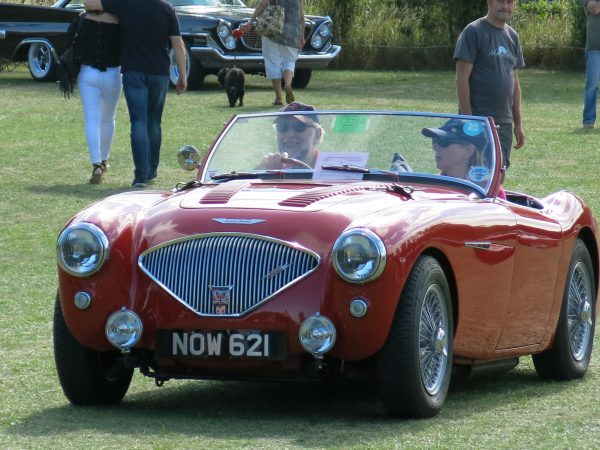 The New Forest Austin Healey Club have a stand at The White Dove Collector's Transport Show
