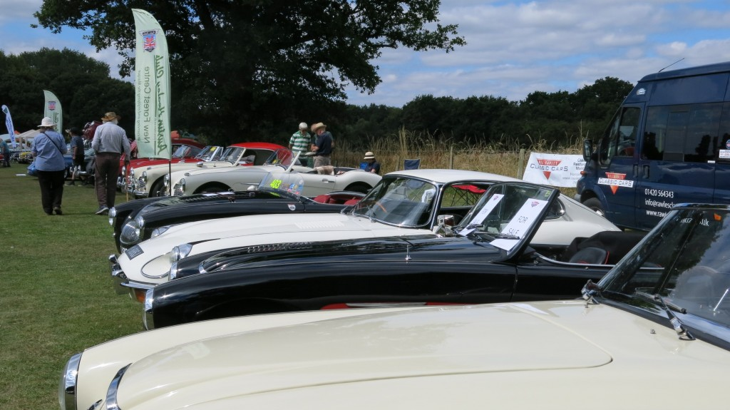 Bill Rawles Classic Cars and The New Forest Austin Healey Club at The White Dove